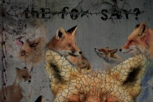 fox, Edit, Grunge, Quote