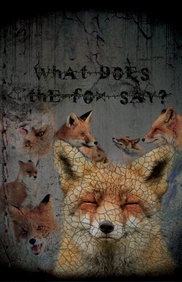 fox, Edit, Grunge, Quote HD Wallpaper Desktop Background