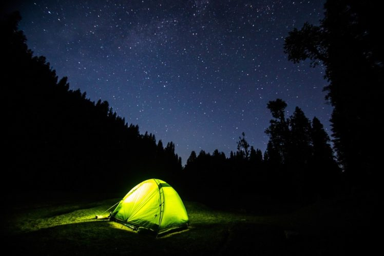 Night Sky Forest Trees Lights Hd Wallpapers Desktop And Mobile Images Photos