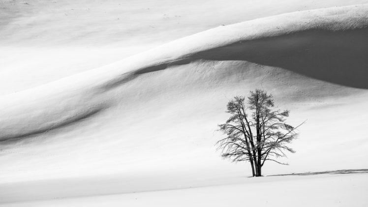 nature, Landscape, Trees, Winter, Snow, Hills, Monochrome, Shadow HD Wallpaper Desktop Background