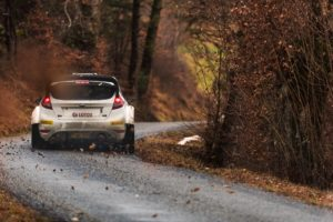 wrc, Race cars, Rallye, Rally cars, Ford Fiesta, Fall, Leaves
