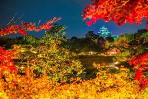 pagoda, Night, Japan