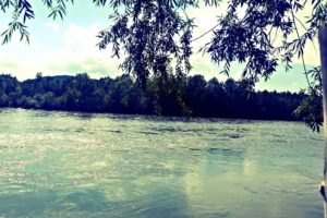 landscape, River, Summer, Serbia, Trees