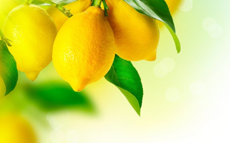 Lemons Fruit Hd Wallpapers Desktop And Mobile Images Photos