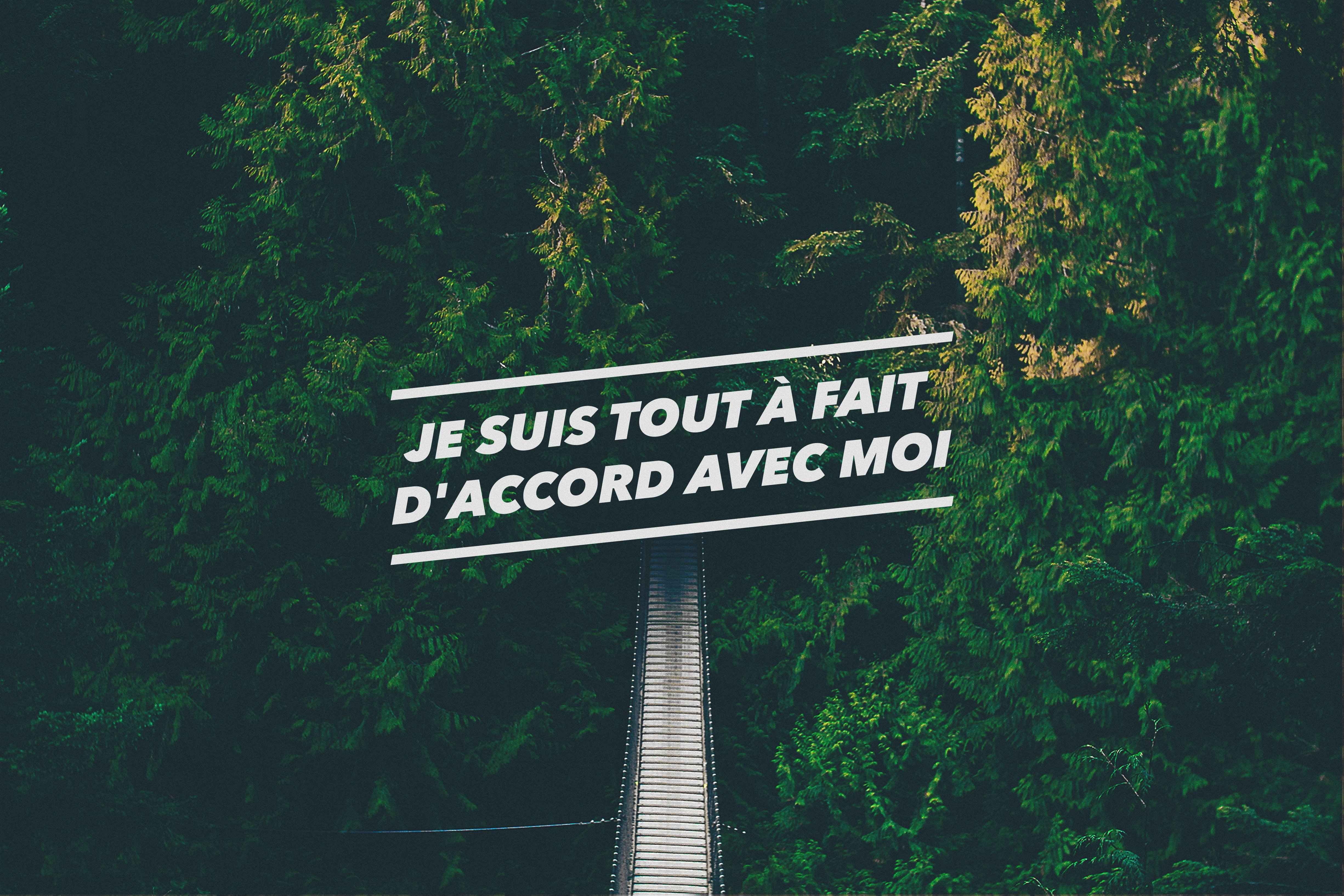 Iphone Quote Wallpaper Hd: French, Forest, Green, Quote, Confidence, Bridge