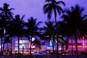 cityscape, Palm trees, Miami, Miami Beach