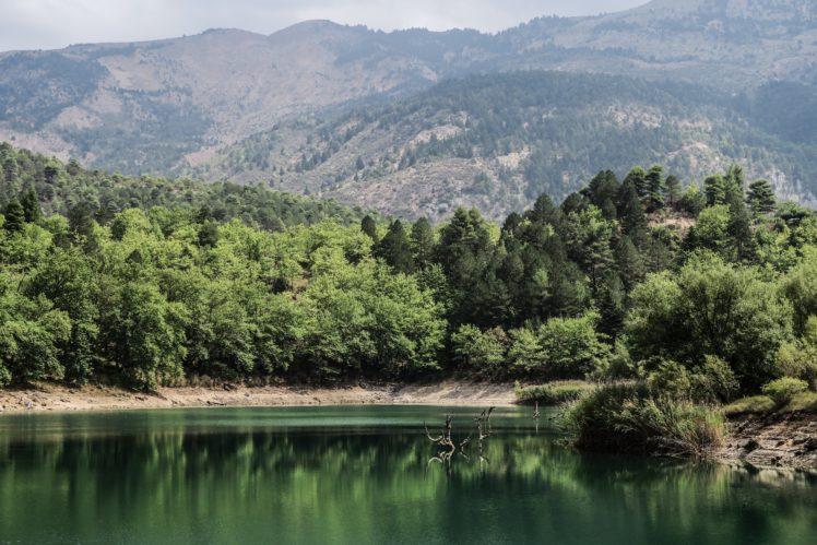 nature, Water, Trees HD Wallpaper Desktop Background