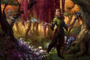 elves, Fantasy art, Magic