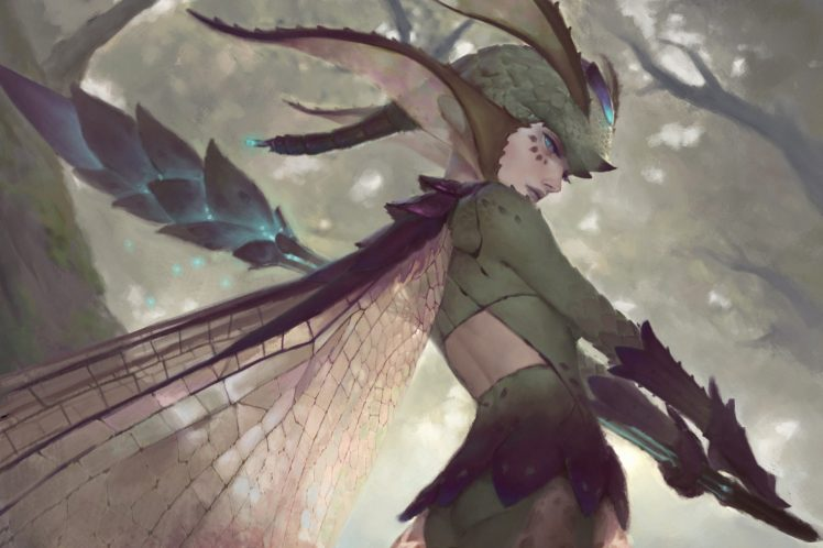 warrior, Fairies, Fantasy art HD Wallpaper Desktop Background