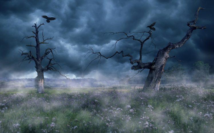 sky, Clouds, Landscape, Trees HD Wallpaper Desktop Background