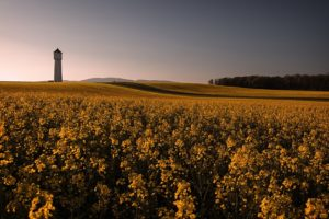 field, Landscape, Sky, Building
