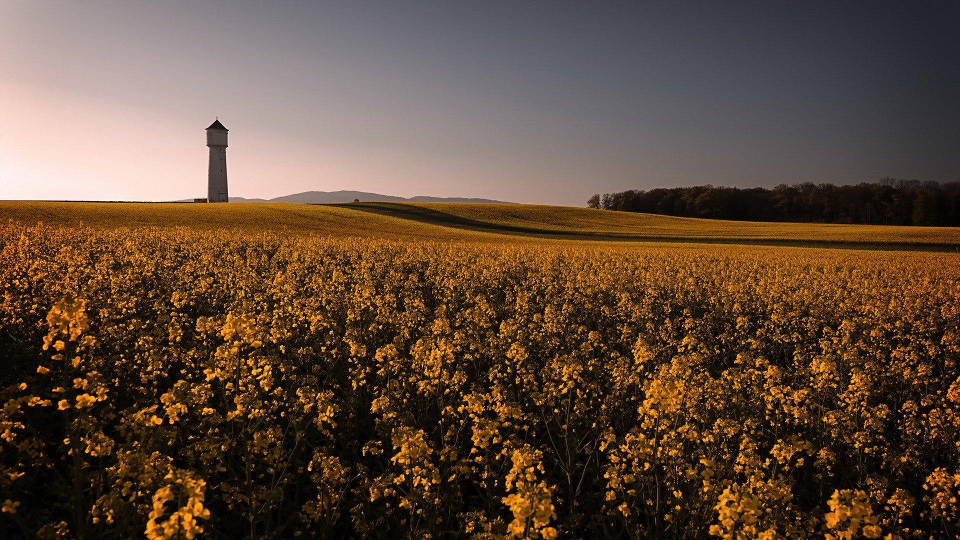 field, Landscape, Sky, Building Wallpaper