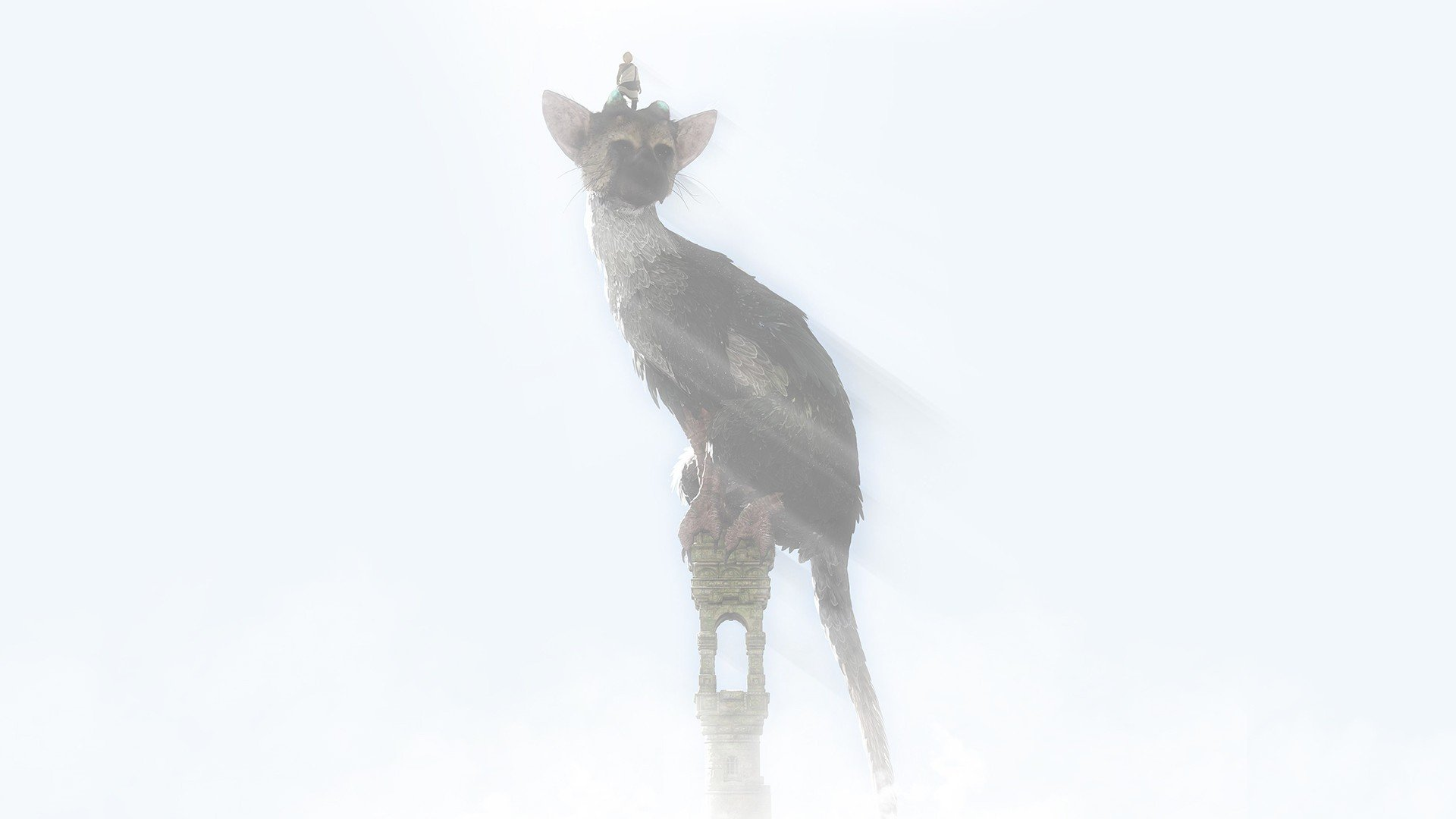 Trico The Last Guardian Playstation 4 Hd Wallpapers Desktop