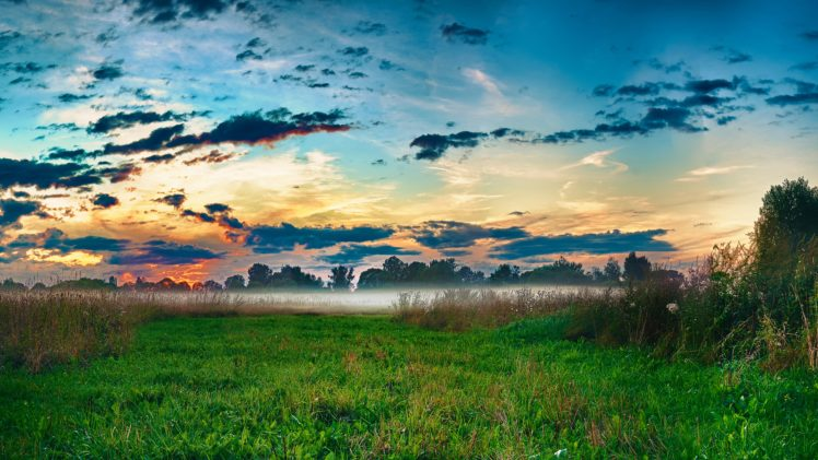nature, Landscape, Grass, Mist HD Wallpaper Desktop Background