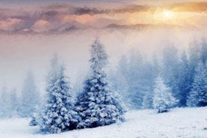 nature, Snow