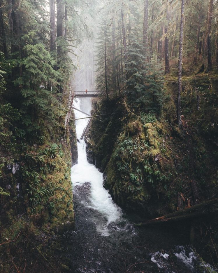 landscape, Forest, Waterfall HD Wallpaper Desktop Background