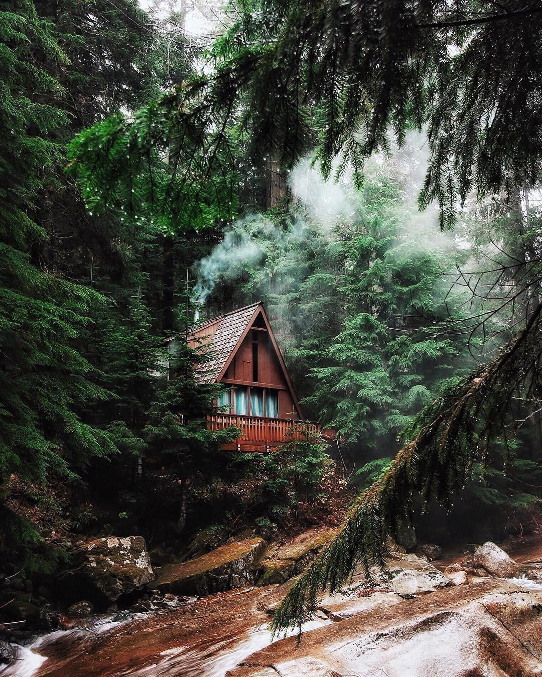 Forest, River, Landscape HD Wallpapers / Desktop And