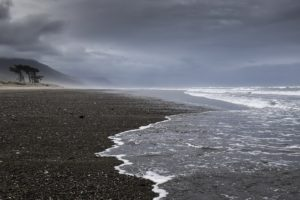 New Zealand, Coast, Sea, Landscape, Nature