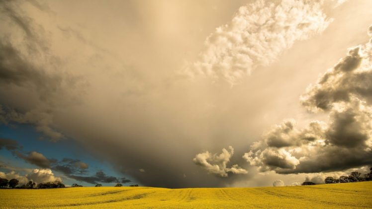 sky, Clouds, Field, Nature, Landscape HD Wallpaper Desktop Background