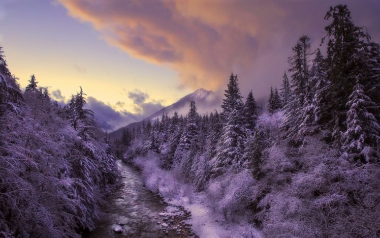 winter, Landscape, Nature, Snow, Trees HD Wallpaper Desktop Background