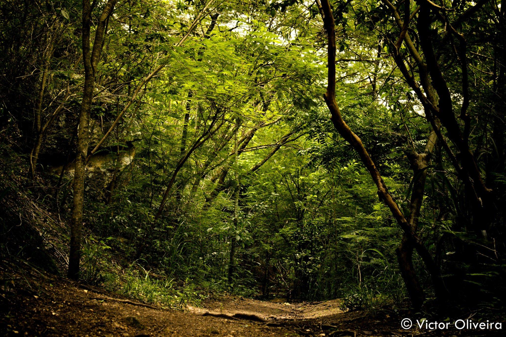 Nature Landscape Brazil Rio De Janeiro Hd Wallpapers Desktop And Mobile Images Photos