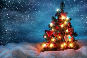 Christmas Tree, Lights, Snow, Sky