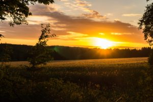 sunset, Landscape, Field, Sweden