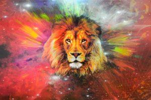 lion, Galaxy