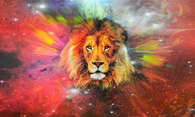 Lion Galaxy Hd Wallpapers Desktop And Mobile Images Photos