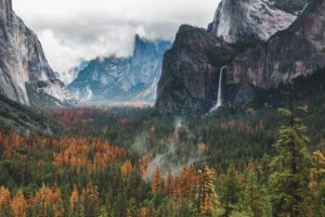 wilderness, Mountains, Forest, Yosemite National Park, Yosemite Valley
