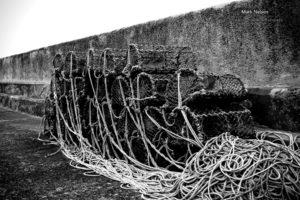 monochrome, Ropes