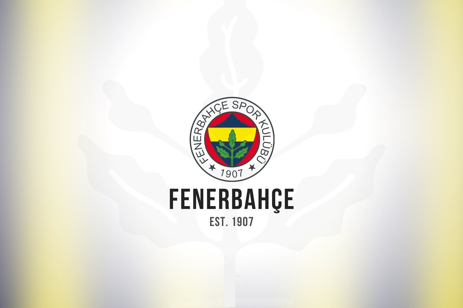 Team, Fenerbahçe, Sports Club HD Wallpapers / Desktop And