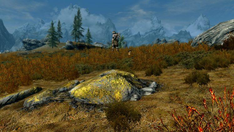 The Elder Scrolls V: Skyrim, Video games HD Wallpaper Desktop Background