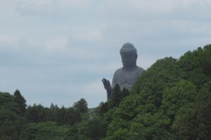 Buddha, Buddhism, Statue, Forest, Trees, Green