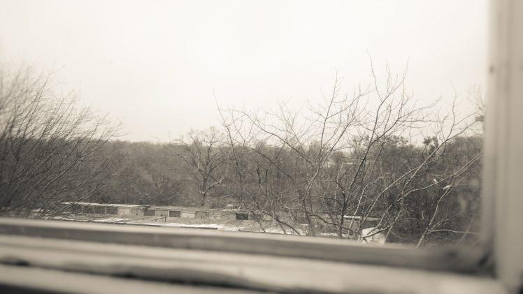 dead trees, Window, Old building, Monochrome, Blurred HD Wallpaper Desktop Background