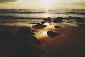 landscape, Phone camera, Beach