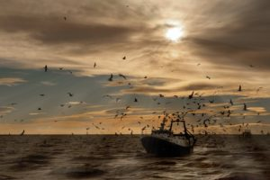 sea, Boat, Sky