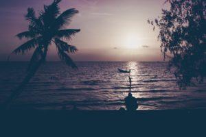 nature, Water, Trees, Sunset, Sun