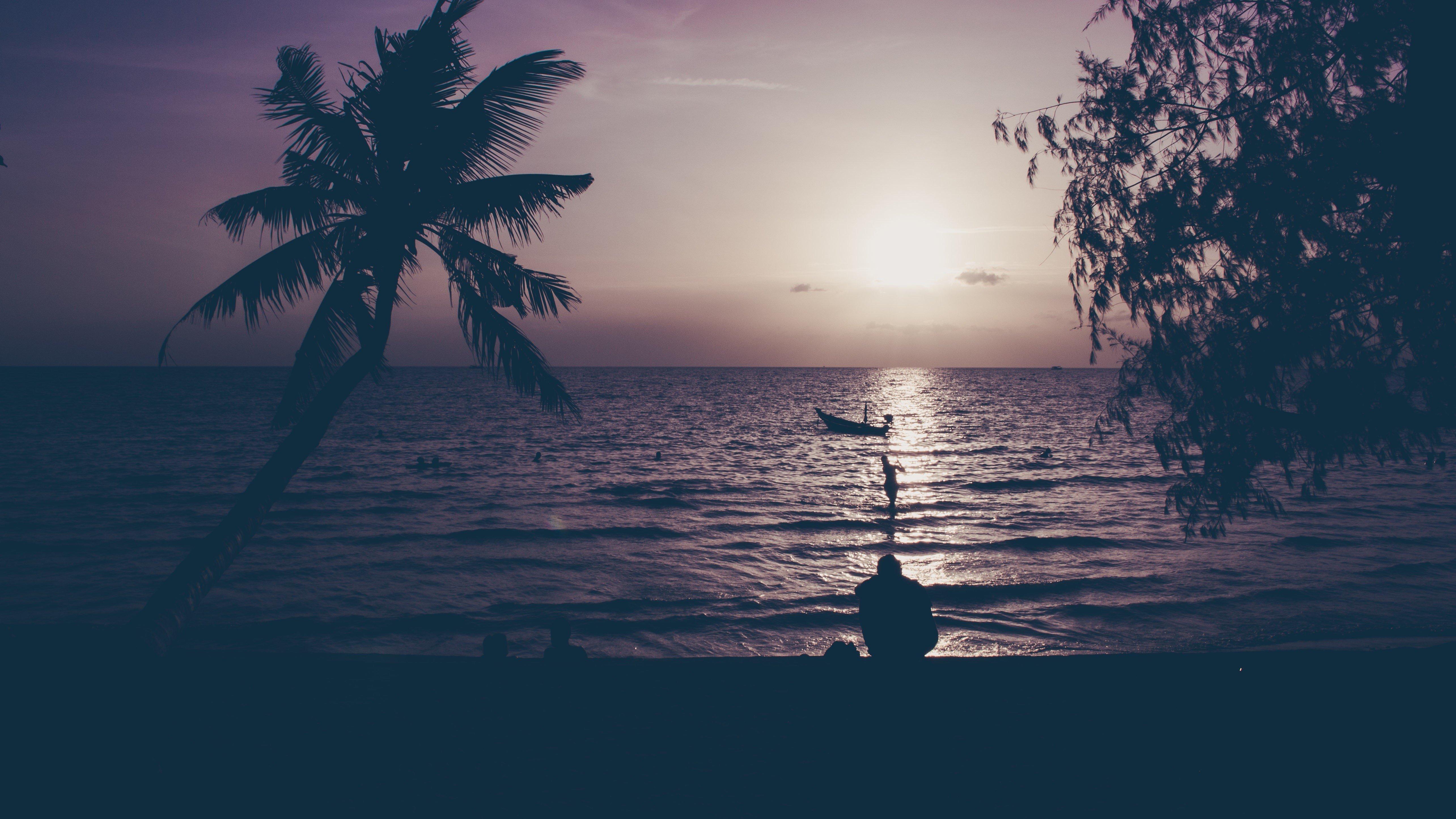 nature, Water, Trees, Sunset, Sun Wallpaper