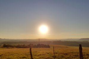 sun rays, Field