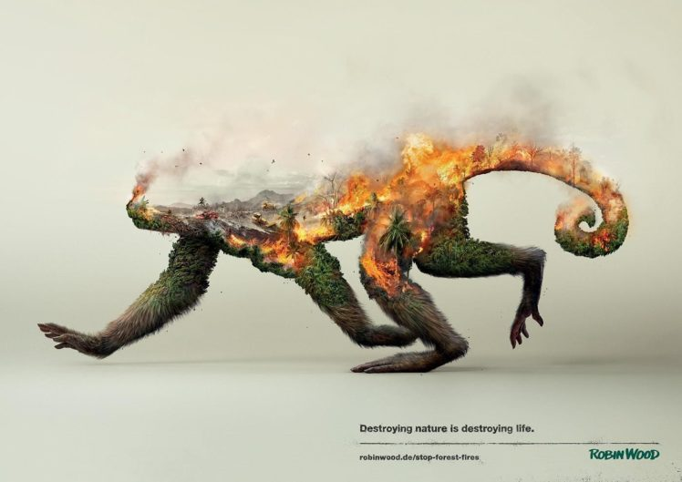 Robin Wood, Nature, Animals, Double exposure, Monkey, Environment, Palm trees, Fire, Smoke, Destruction, Ecology, Artwork, Poster, Simple background, Forest clearing, Trees, Wildlife, Digital art HD Wallpaper Desktop Background