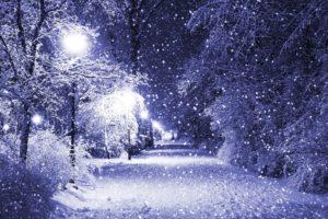 winter, Snow, Night, Park, Path, Trees