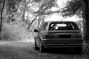 BMW, BMW E46, Forest, Monochrome