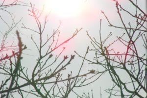 Sun, Sky