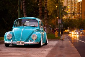 vehicle, Car, Blue cars, Volkswagen, Volkswagen Beetle, Street, Road, Lowrider, Palm trees, Building, Hawaii, Vehicle front