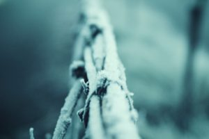 snow, Macro, Winter, Depth of field