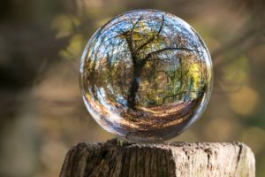 nature, Landscape, Trunks, Wood, Sphere, Glass, Reflection, Trees, Fall, Leaves, Depth of field, Distortion