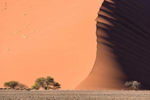 desert, Sand, Dune