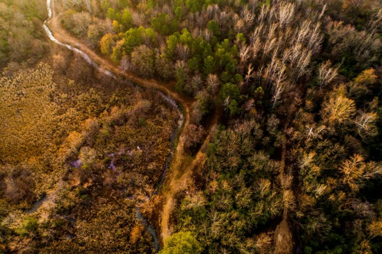 nature, Trees, Aerial view, River, Forest, HDR HD Wallpaper Desktop Background