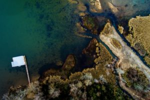 nature, Water, Trees, Pier, Aerial view